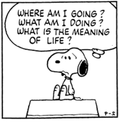 meaning-of-life_peanuts-cartoon